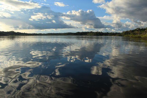 Laguna Grande, Cuyabeno National Park, Ecuador, Amazon