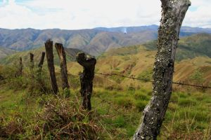Vilcabamba view - fence