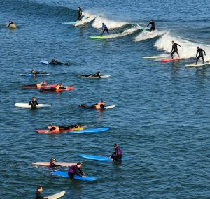 Busy day in surfing school