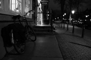 Amsterdam evening street 3