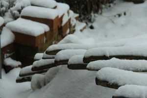 Snow and bricks are large parts of my Belgian experience