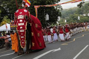 Vesak poya red elephants