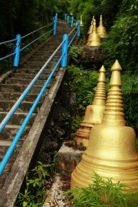 Tiger Temple 09