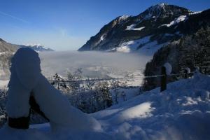 Alpine valley, Switzerland