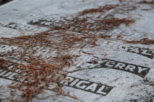 graves and needles
