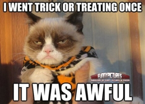 I-Went-Trick-Or-Treating-Once-Funny-Cats