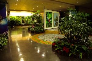 Taipei airport garden