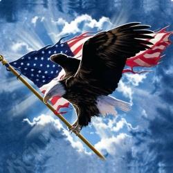 America up the wazoo