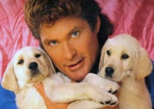 hasselhoff-with-puppies