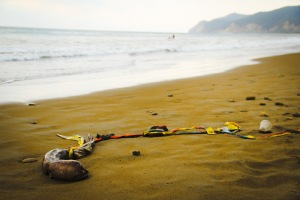the beach, and the pollution that's killing it