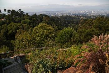 Oakland vista