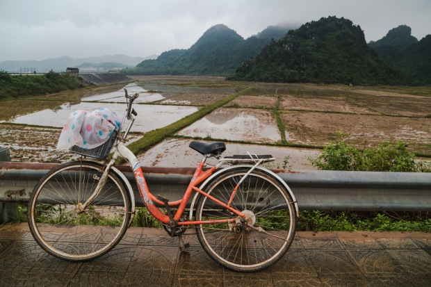 Phuong Nha field