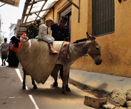 Lamu kids and donkeys
